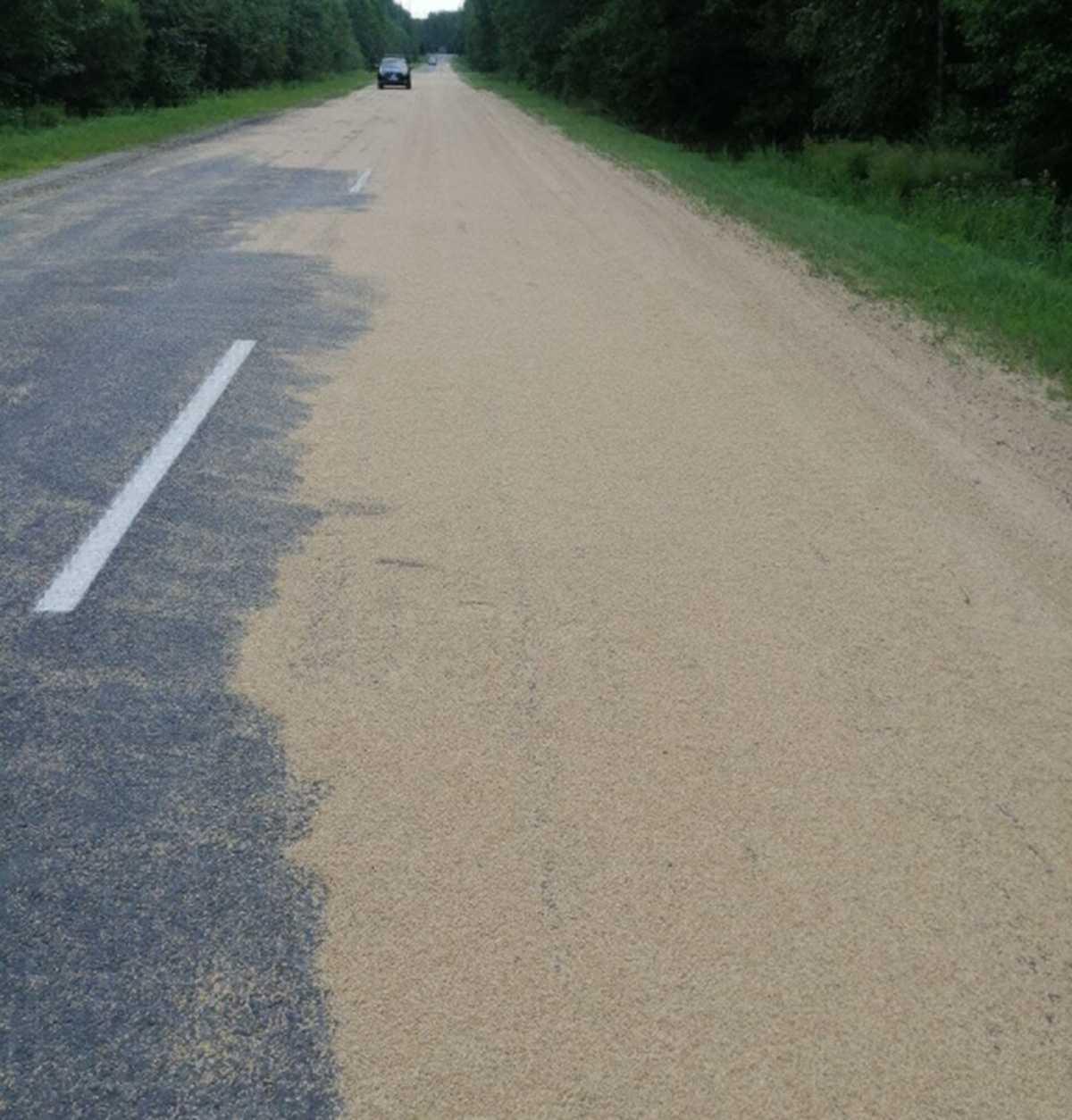 На дорогу высыпалось зерно