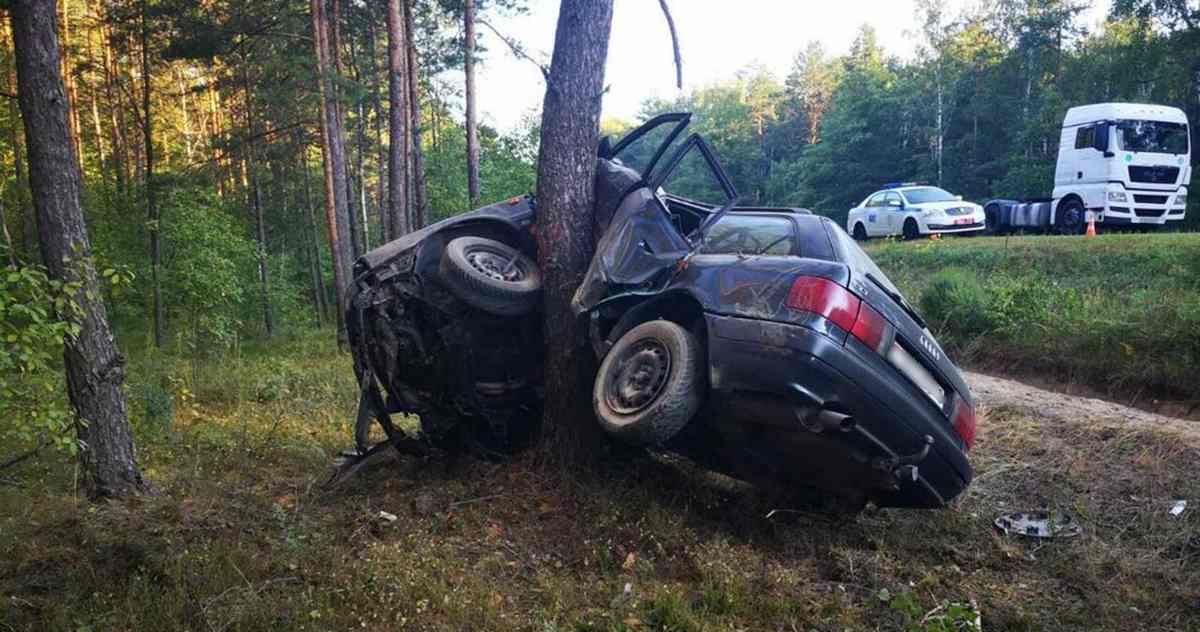 ДТП с Audi в Калинковичском районе