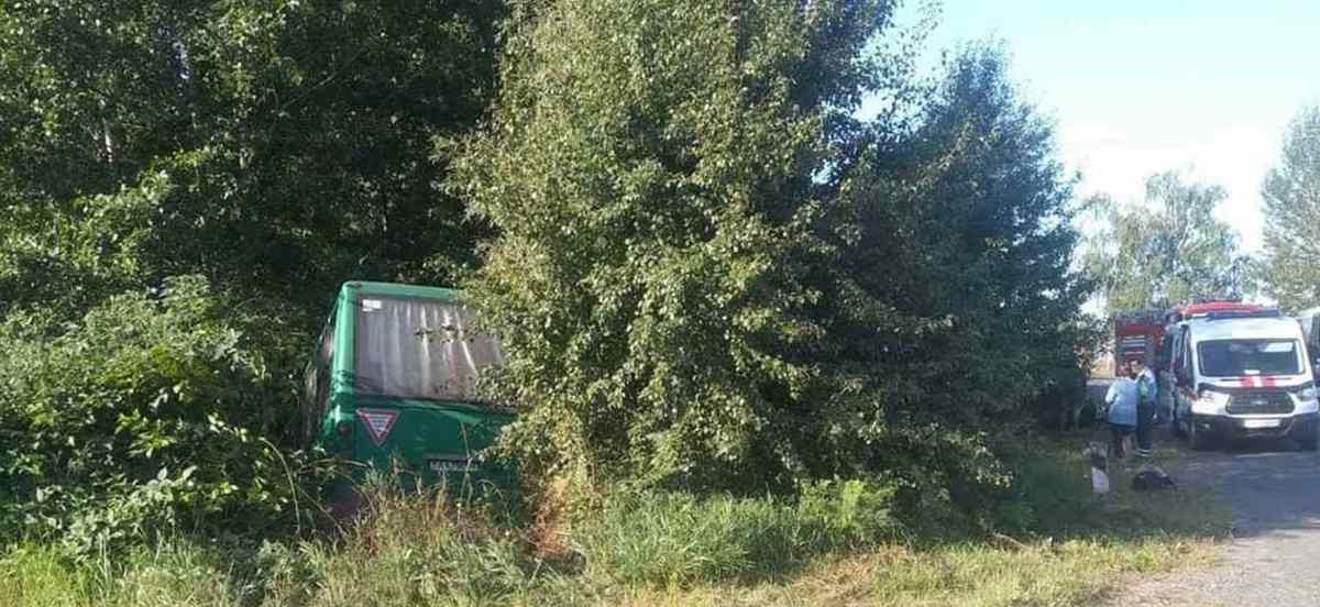 автобус съехал в кювет