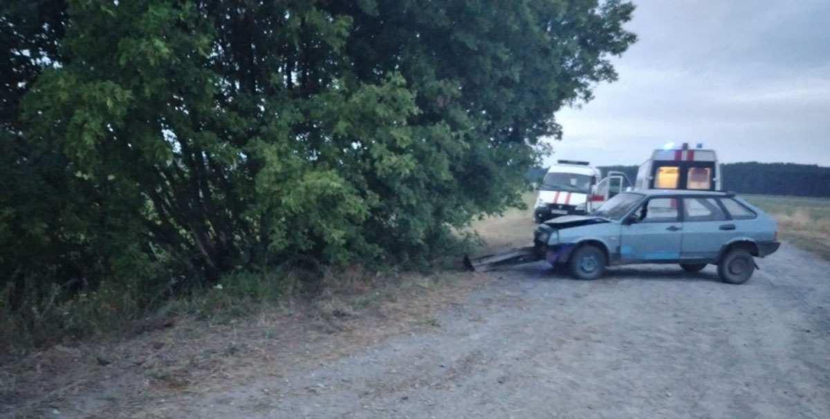 пьяный бесправник врезался в дерево