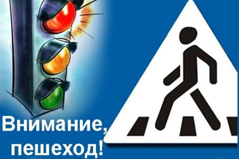 """Акция """"Пешеход"""""""