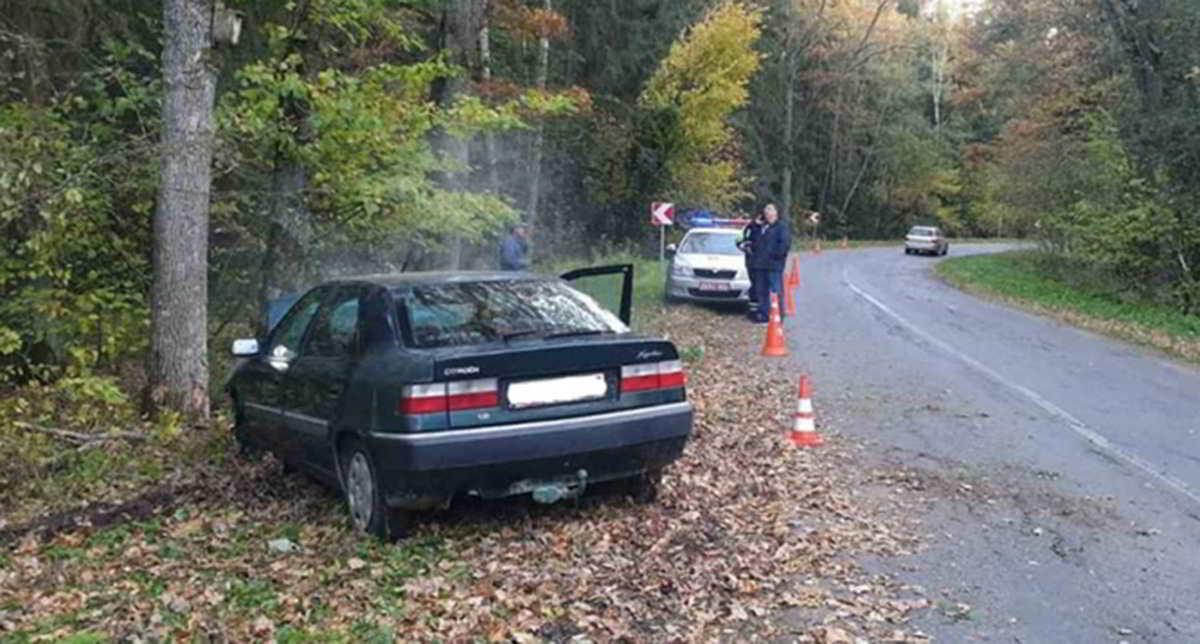 водитель-бесправник врезался в дерево